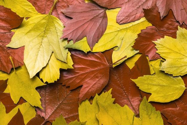 Achtergrond van gele en rode herfstbladeren. plat leggen.