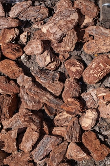 Achtergrond van geraspte decoratieve tuinboomschors close-up macrofotografie