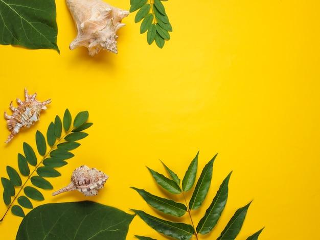 Achtergrond van groene tropische bladeren, schelpen op geel papier. kopieer ruimte