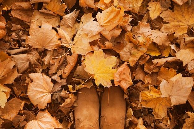 Achtergrond van herfst gele en oranje droge bladeren die op de grond liggen met suède damesschoenen.