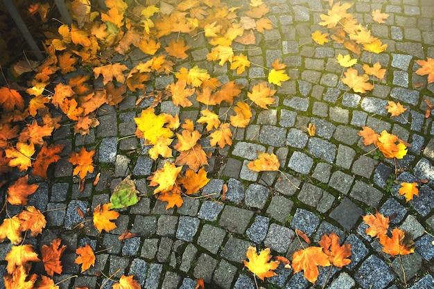 Achtergrond van herfstbladeren gevallen op geplaveide bestrating.
