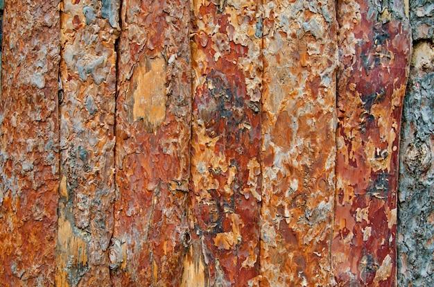 Achtergrond van houten omheining die van gepelde pijnboomboomstammen wordt gemaakt, natuurlijke houten textuur
