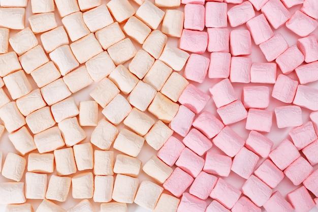 Achtergrond van klein geel en roze zephyrclose-up