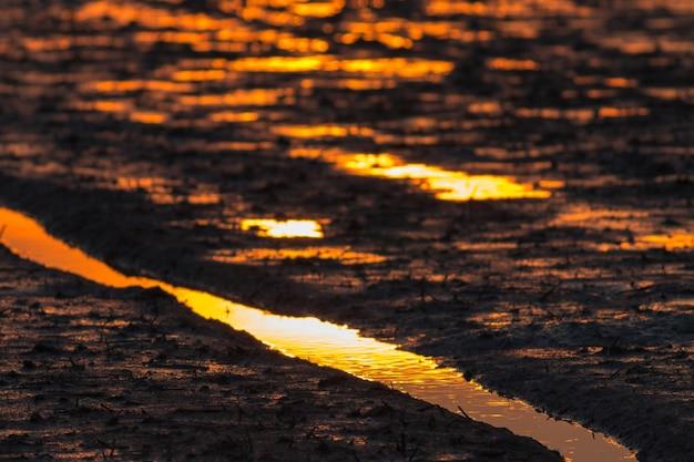Achtergrond van mud rijstveld en het gloden licht op zonsondergang tijd