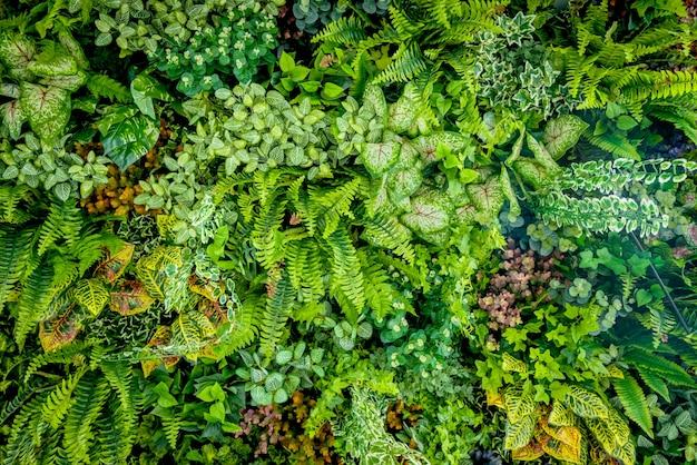 Achtergrond van plastic plant op muur, verticale tuin