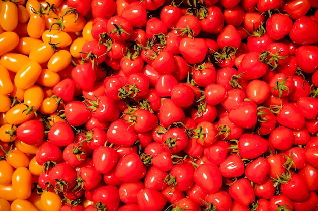 Achtergrond van rode en gele rijpe tomaten gekweekt zonder chemie.