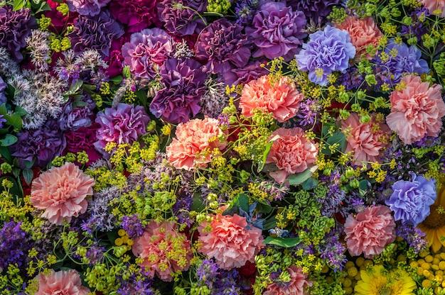 Achtergrond van verschillende soorten anjers. bloemen achtergrond. bloemstuk van gekleurde anjers.