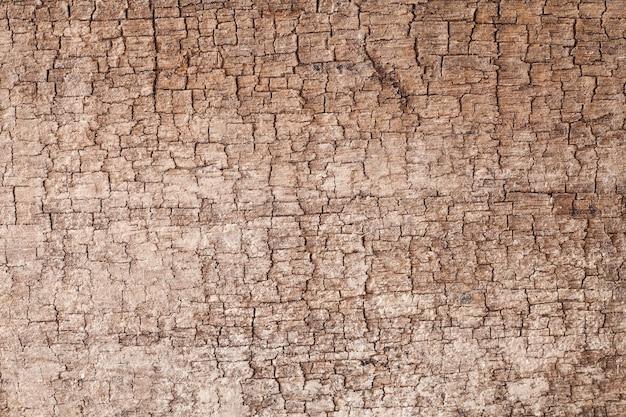 Achtergrondstructuur oude houten plank.