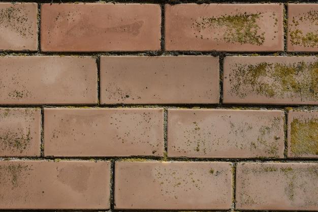 Achtergrondtextuur gekleurde muur van oude onder ogen ziende baksteen