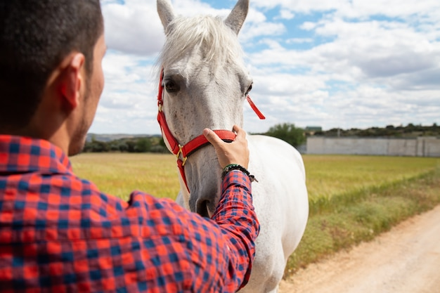 Achtermening van jong mannetje die hand op voorhoofd van wit paard zetten tegen bewolkte hemel op gebied