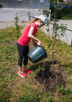 Achtjarig meisje dat een boompje uit een emmer water geeft.