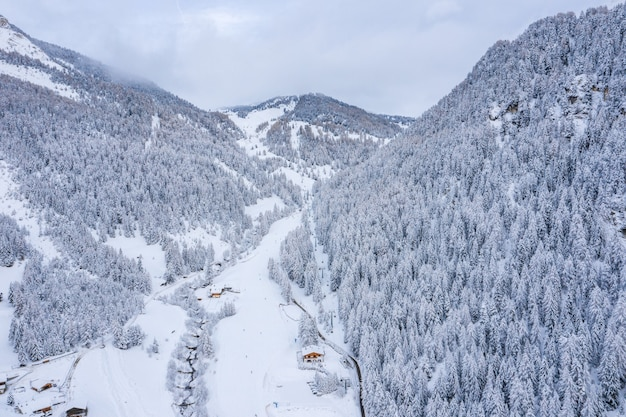 Adembenemend uitzicht op beboste bergen bedekt met sneeuw overdag