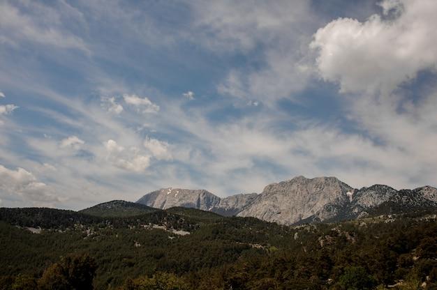 Adembenemend uitzicht op bergen en bossen in turkije