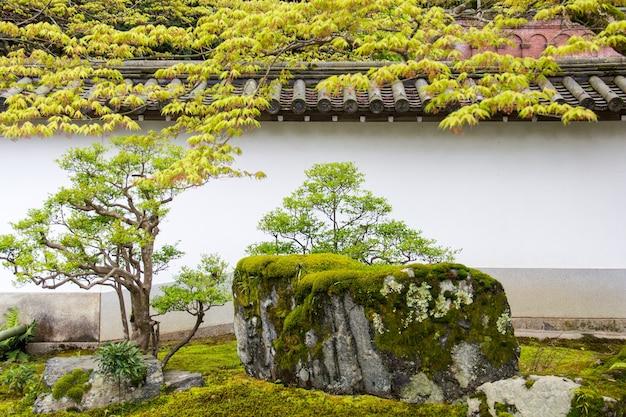 Adembenemend uitzicht op de met mos bedekte rotsen en bomen gevangen in een prachtige japanse tuin