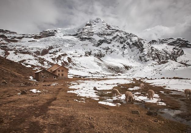 Adembenemend uitzicht op de prachtige besneeuwde berg ausangate in peru