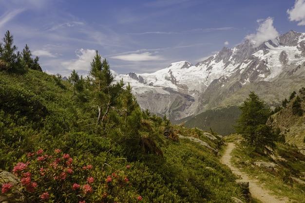 Adembenemend uitzicht op een groen pad met besneeuwde bergen in saas-grund, zwitserland