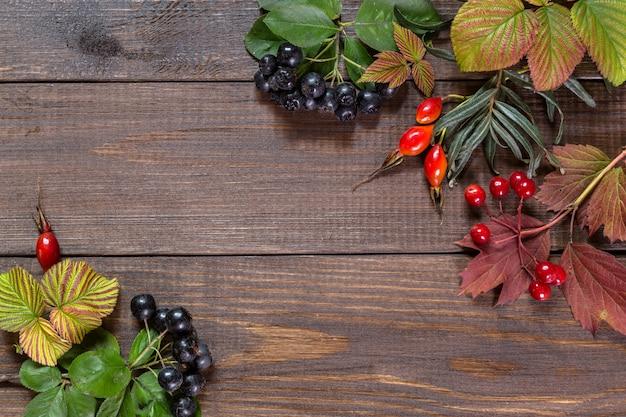 Afbeelding met herfstbladeren.