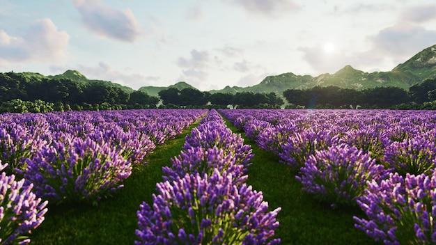 Afbeelding toont een rijk lavendelveld in de provence, frankrijk, met een eenzame boom op de achtergrond. 3d-rendering illustratie