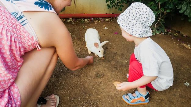 Afbeelding van een gelukkig gezin met een kleine jongen die schattige witte haas voedt op de boerderij