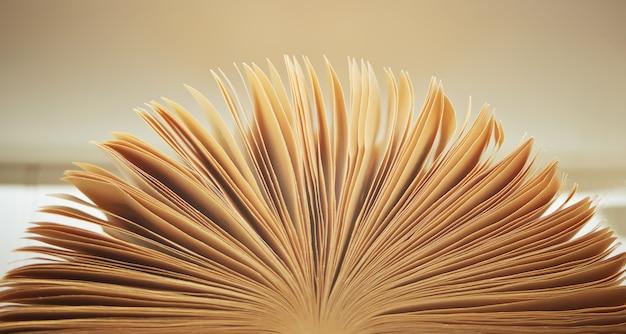 Afbeelding van een open oud boek met pagina's
