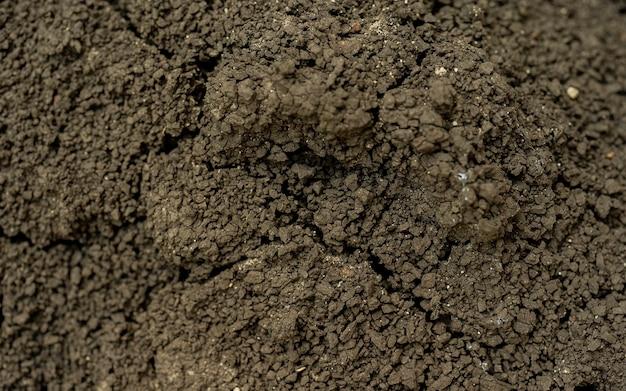 Afbeelding van gebarsten grond voor achtergrond. achtergrond van aarde en droge aarde met scheuren, macrofotografie van detail van scheuren op de aarde gevormd door de zon die de aarde droogt, geen water.