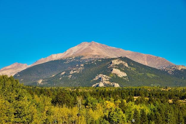 Afbeelding van herfstweergave van berg met espen en pijnbomen tegen blauwe lucht