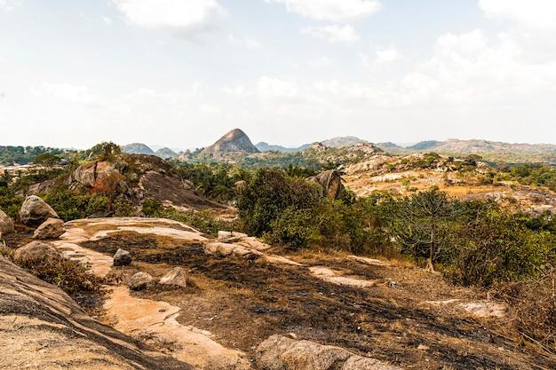 Afrikaans natuurlandschap met vegetatie en terrein