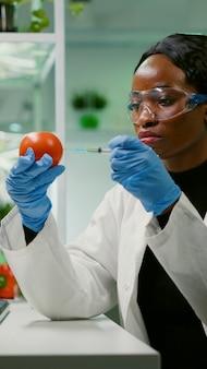 Afrikaanse biochemicus met medische handschoenen die biologische tomaat injecteert met pesticiden voor ggo-test genetische analyse van medische expertise. biochemicus werkzaam in landbouwlaboratorium die gezondheidsvoedsel test