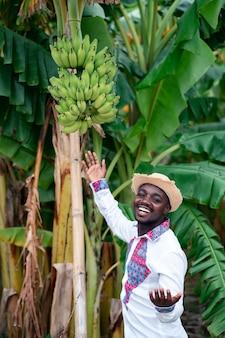 Afrikaanse boer man die met bananenboom in biologische boerderij.