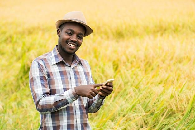 Afrikaanse boer met smartphone in biologische rijstveld met glimlach en gelukkig. landbouw of teelt concept