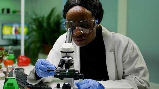 Afrikaanse onderzoeker die een groen bladmonster uit een petrischaal neemt en onder de microscoop legt