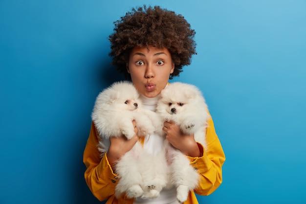 Afro-amerikaanse vrouw omhelst twee witte puppy's, houdt de lippen gevouwen terwijl ze lieve huisdieren wil kussen, brengt een weekend door met beste vrienden