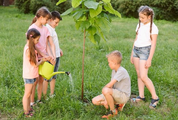 Afstandsschoten kinderen plateren een boom