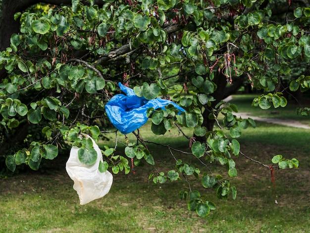 Afval plastic zak die op boomtak bij park overhandigen