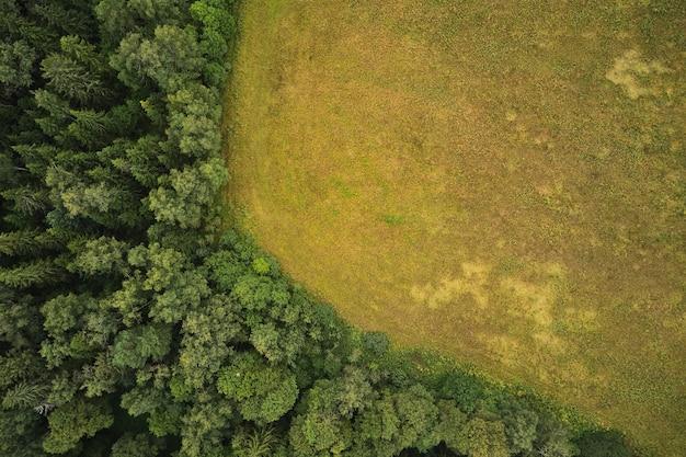 Agrarisch veld met bos in de buurt, zomer, uitzicht van bovenaf