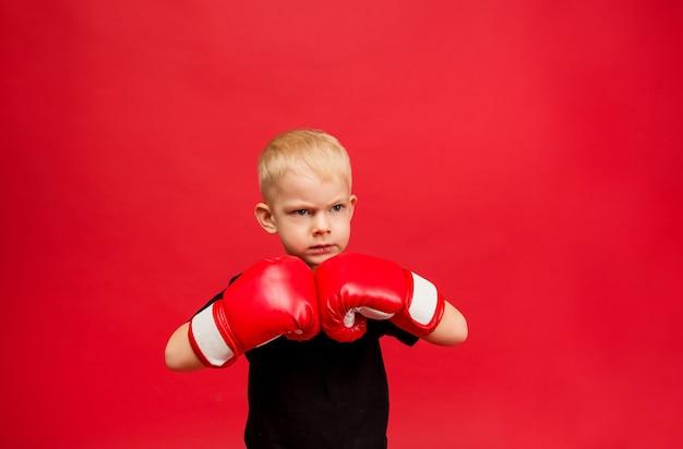 Agressieve kleine jongensbokser in rode bokshandschoenen op rood