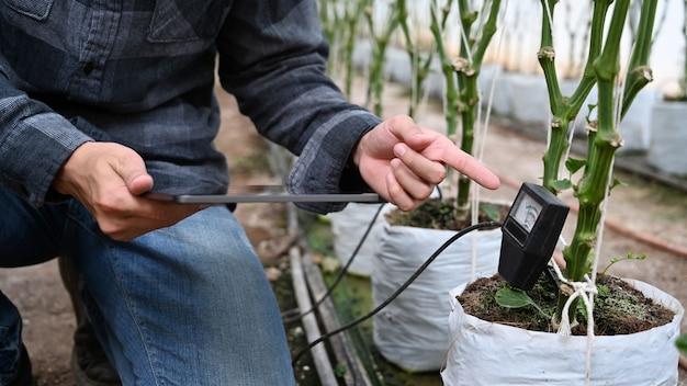 Agronoom die digitale tablet en grondmeter gebruikt, controleert de ph-waarde in de plantzak.