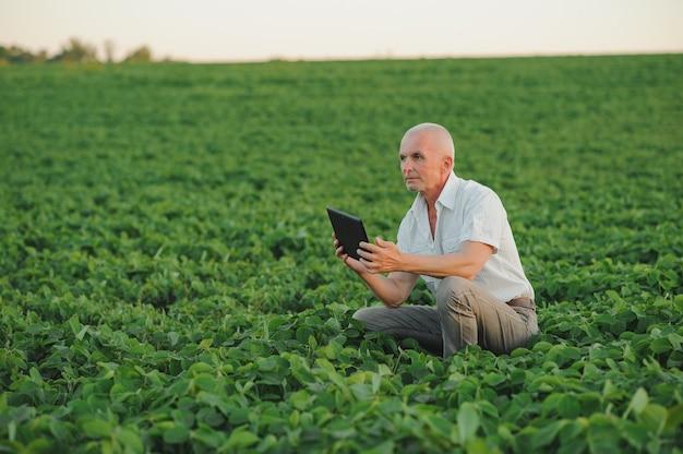 Agronoom inspectie van sojabonen gewassen die groeien op het gebied van de boerderij