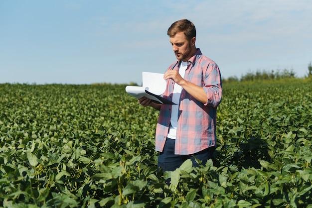 Agronoom of boer die het gewas van het sojabonenveld onderzoekt