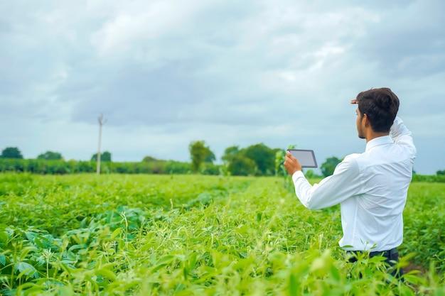 Agronoom op katoenveld met smartphone