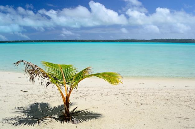 Aitutaki en rarotonga-lagune, verre atollen in het midden van de stille oceaan, cookeilanden