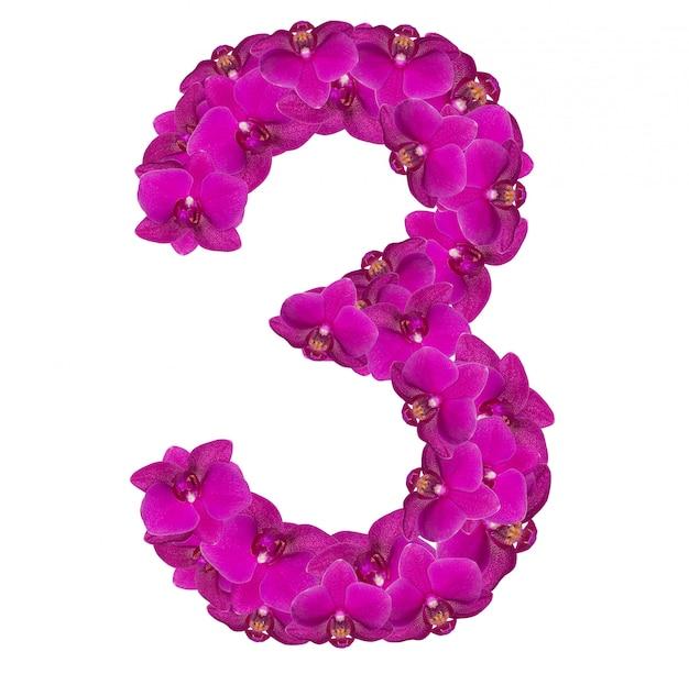 Alfabet nummer drie van orchideebloemen die op wit worden geïsoleerd
