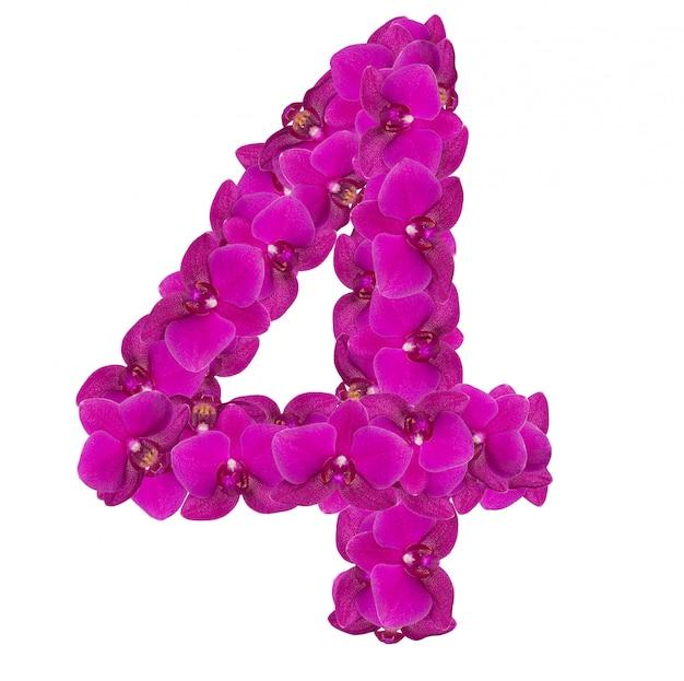 Alfabet nummer vier van orchideebloemen die op wit worden geïsoleerd