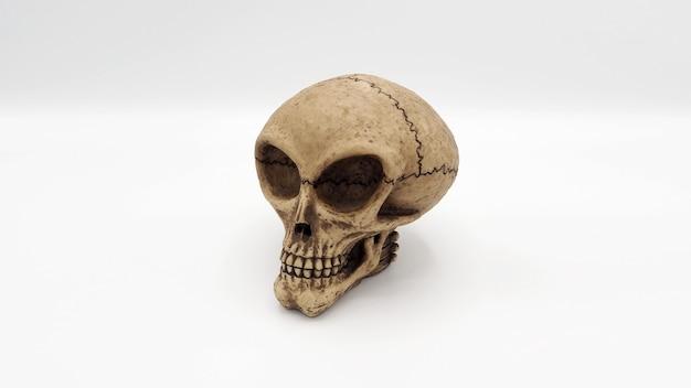 Alien skull speelgoedmodel gemaakt van plastic hars