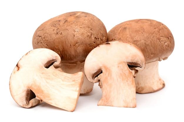Alleen geplukte verse champignons