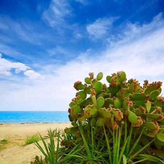 Almeria mojacar strand middellandse zee spanje