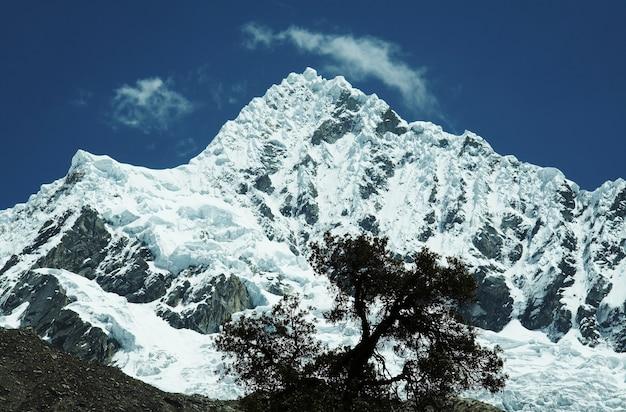 Alpamayopiek in berg cordilleras en boomsilhouet