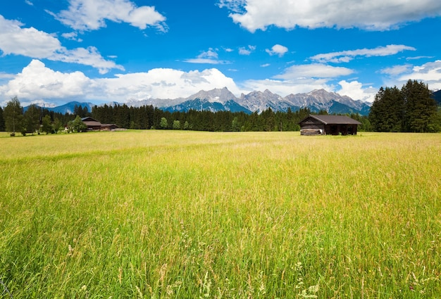 Alpen bergweide rustige zomer uitzicht met houten huis en schuur, oostenrijk, gosau dorp rand. afbeelding.