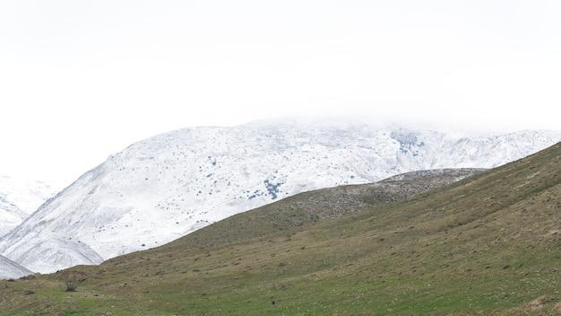 Alpenweiden in de winter
