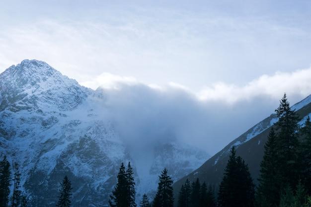 Alpien de berglandschap van alpen, bovenkant van europa zwitserland